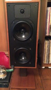 Bowers and Wilkins DM14s.